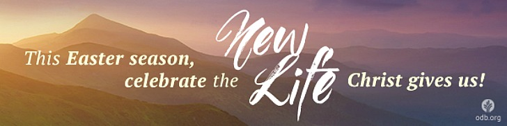 Celebrate the New Life Christ Gives You